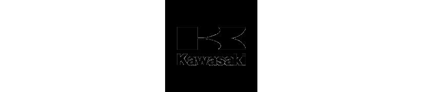 KAWASAKI - Motos Daytona